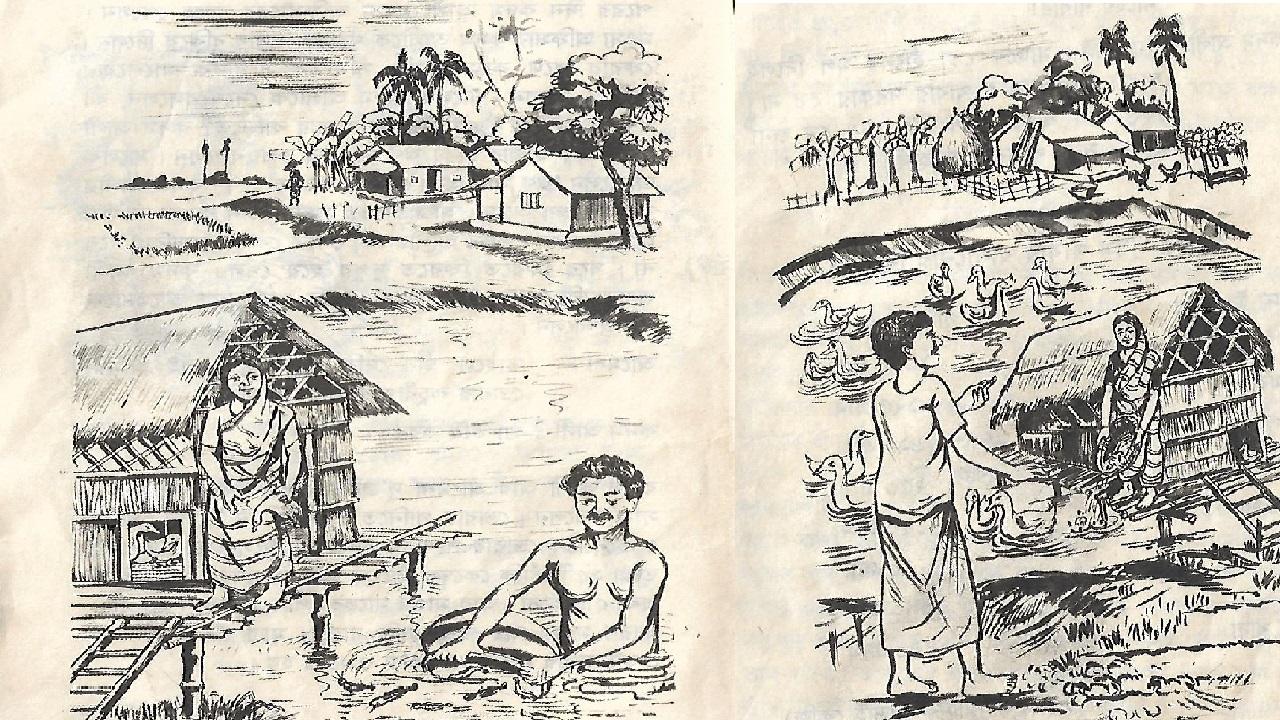 একসাথে দুইয়ের চাষঃ মাছ ও হাঁস